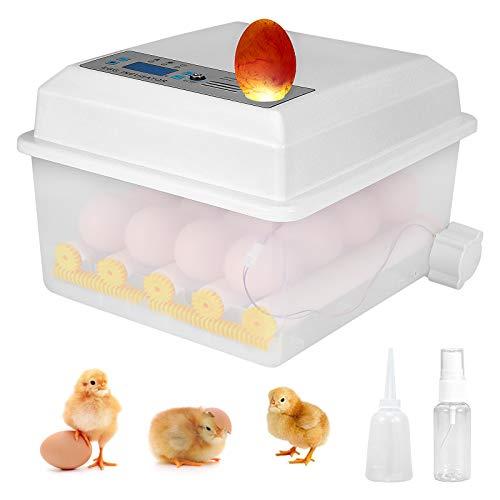 PaNt Incubadora de Huevos 16 Huevos Incubadora Automática de Huevos on Control de Temperatura y Giro Automático, Digital Doméstico Incubadora de Huevos para Pollos, Patos, Gansos en Casa
