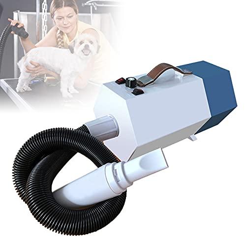 TBDLG Secador Portátil para Perros y Gatos, Secador de Pelo para Mascotas 1800 W con 2 Boquillas, Secador para Mascotas Grandes/Medianas/Pequeñas