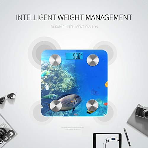 JXCSGBD Colorful Coral Reef Exotic Fishes Red Best Rated Bathroom Scales Bathroom Scales Most Accurate Infant Scale Digital Tracks 8 Key Compositions Analyzer Sync with Fitness Apps 400 Lbs