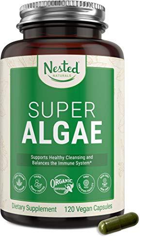 super algae - 1