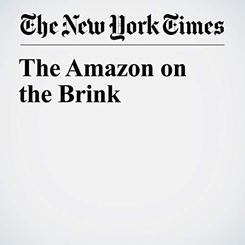 The Amazon on the Brink copertina