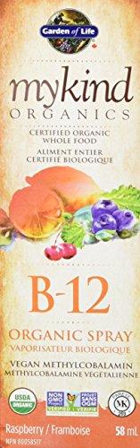 Garden of Life mykind Organics Methylcobalamin B12 Spray (Vegan, Gluten & Dairy Free, Raspberry Flavour, 500mcg, 58ml)