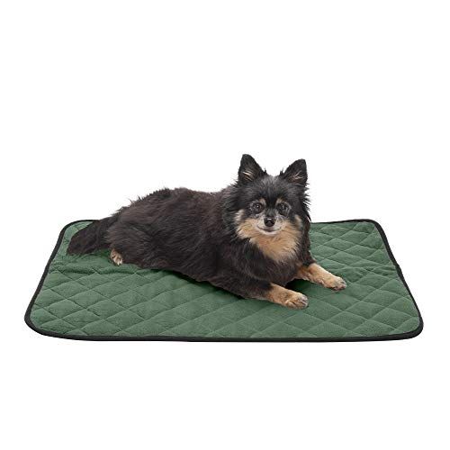 Furhaven Pet Bed for Dogs and Cats - ThermaNAP Quilted Velvet Self-Warming Thermal Blanket Mat for Crates or Kennels, Washable, Moss, Small
