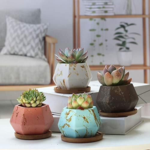 LYYJF Succulent Pot Ceramic Hexagonal Set of 4, Geometric Flower Plant Planter with Drainage Hole Colorful Bonsai Herb Container for Indoor Home Office,5pcs