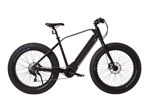 Witt E-Sumo Electric Fat Bike Brose Mid-Drive