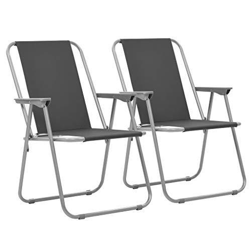 vidaXL 2X Chaise Pliable de Camping Gris Fauteuil Jardin Terrasse Plage Patio