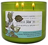 T&H Stress Relief Aromatherapy Candles - All Natural Soy Wax and Essential Oils Long Lasting 16 Ounce 80 Hour Burn (Eucalyptus Spearmint)