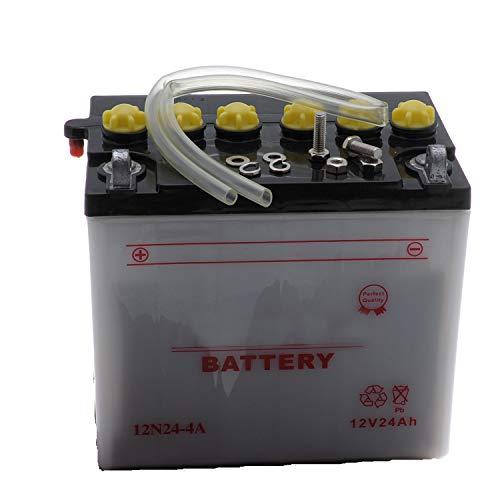 Jardiaffaires 12N24-4 A - Batería para tractor cortacésped (lista para usar en el coche)
