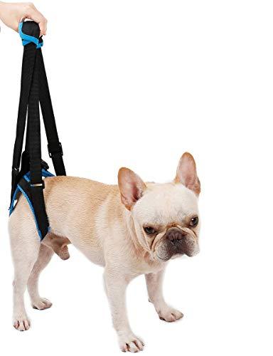 HUNDEGESCHIRR Hund Lift Geschirr Vorne Hinten Dog Unterstützung Geschirr Gehhilfe Lifting Ziehen Weste Old Verletzte Hunde Hunde Gehhilfe Den Knien Ihres Hundes,S