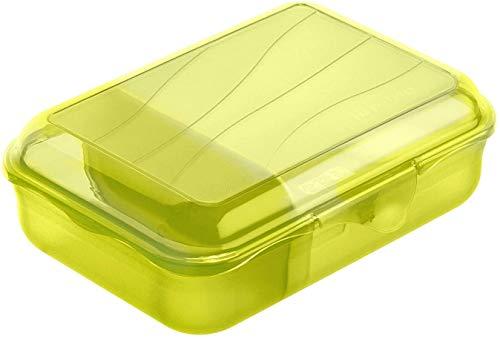 Rotho Fun Vesperdose 0,9l mit herausnehmbarer Trennwand, Kunststoff (PP) BPA-frei, grün, S/0,9l (17,7 x 12,9 x 6,0 cm)