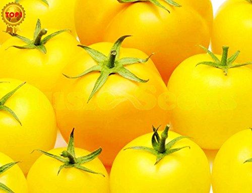 1bag = 200pcs Big Pack japanese GRAINES Tomate cerise Bonsai Légumes et fruits Graines planteur biologique Maison & Jardin