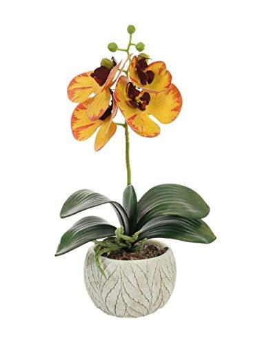 Home Decor 4 U – Künstliche Orchidee im Topf, (32 cm), Phalaenopsis, Kunstpflanze, Orchidee, Mittelstück, künstliche Orchidee, künstliche Pflanzen Gelb, 32 cm