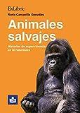 Animales salvajes. Historias de supervivencia en la naturaleza
