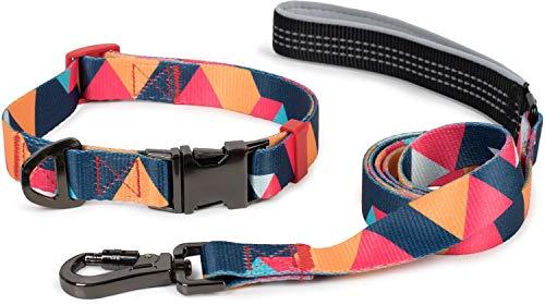 Puccybell Collar y Correa para Perros de Nylon (1,5 m) en un Conjunto, diseño geométrico, para Perros pequeños, medianos y Grandes HLS008 (L, Naranja Colorido)
