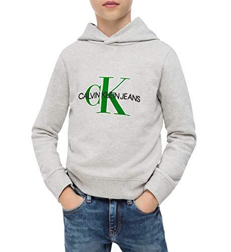 Calvin Klein Jongen Truien Grijs