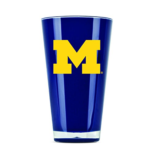 NCAA Michigan Wolverines 20oz Insulated Acrylic Tumbler