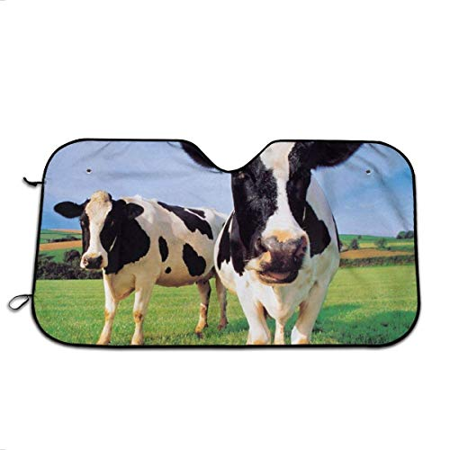 Heat Shield Shade, Auto Front Window Zonneschaduw, Zon En Warmte Reflector, Twee Holstein Koeien Staand In Grass Farm Houdt Voertuig Koel, Universele Auto Voorruit Zonnescherm M(140X76CM) 2463