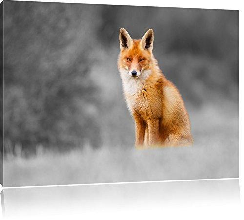 prachtvoller Fuchs schwarz/weiß Format: 120x80 auf Leinwand, XXL riesige Bilder fertig gerahmt mit Keilrahmen, Kunstdruck auf Wandbild mit Rahmen, günstiger als Gemälde oder Ölbild, kein Poster oder Plakat