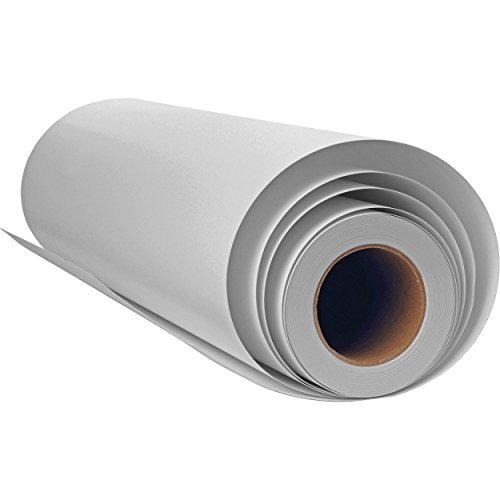Canvas Roll for Wide Format Inkjet Printer, Polyester Paper Roll for Epson Canon HP Plotter 300gsm, 24 Inch x 100 Feet (60cm x 30m)