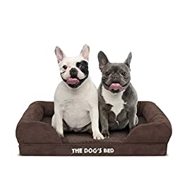 The Dog's Bed Orthopaedic Dog Bed, Premium Memory Foam S-XXL, Waterproof, Dog Pain Relief for Arthritis, Hip & Elbow Dysplasia, Post Surgery, Lameness, Senior Supportive, Calming Bed, Washable Cover