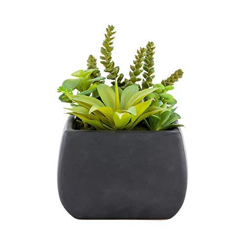 Plastic Table Art Faux Succulent Arrangement - Tetra Porcelain Planter, Black - 6