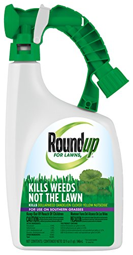 Roundup for Lawns 6 Ready-To-Spray (Southern), 32 oz.