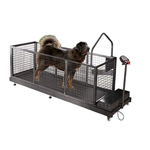 Zakjj Tapis Roulant per Cani Animali Domestici da Compagnia Animale Domestico Mastino Cane Grande Esercizio Fino A 300 Libbre Attrezzatura Esercizi con