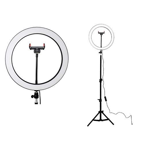 Aro de Luz con Tripode LED Ring Light Anillo Luz para Maquillaje, Tiktok, Live Stream, Fotografia, Vlog, 12