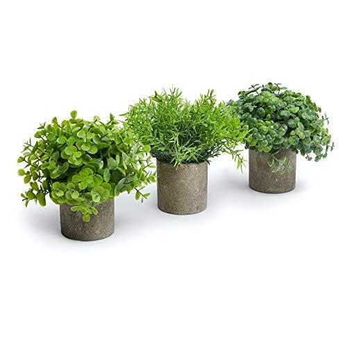 BattlBorne Mini Artificial Plants - Dark Concrete Pots - Beautiful Greenery - Bathroom/Kitchen Decor - Farmhouse - Small Indoor Plants - Realistic Look and Feel - No-Maintenance - Weddings/Showers