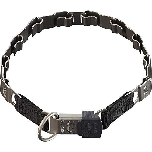 Sprenger Hundehalsband