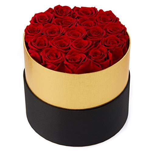 Eterfield Rosenbox Flowerbox mit 18 Infinity Rosen Geschenk 3 Jahre Haltbar für Sie (Rot, Runde Schwarze Box)