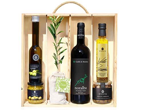 Lote Gourmet Regalo Terra con árbol olivo natural para plantar, botella de vino tinto, aceitunas, AOVE, aceite condimentado y crema para untar
