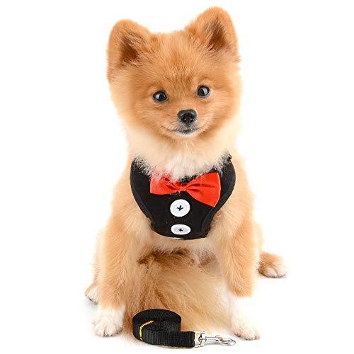 PAIDEFUL Hidalgo Arnés de Chaleco para Perros Pequeños Medianos Niños Prueba de Escape Gato Correa del Arnés con Plomo Malla Suave Mascota Cachorro Chihuahua Perritos Vestido de Fiesta de Boda Negro M