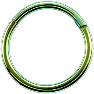 JRPBH Titanium Hinged Segment Nose Ring 16g amp;14g Ear Cartilage Helix Lip Piercing Unisex Jewelry (Color : Green, Size : 1.6x10mm)