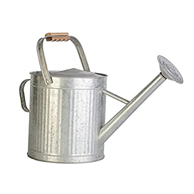 2 gallon Vintage Galvanized Watering Can with Wood Handle