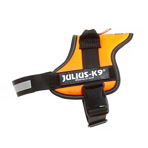 Julius-K9 Powerharness, 0, UV Orange
