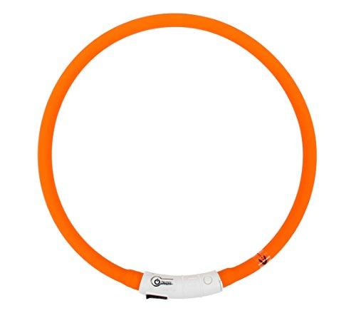 Dehner Hundezubehör Leuchthalsband Beamie LED, Länge 60 cm, rot/orange
