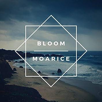 BLOOM (Instrumental Version)