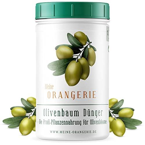 Meine Orangerie Olivenbaum Dünger [1kg] - Premium Pflanzendünger für Olivenbäume- Verzichten Sie auf Fertig Flüssig Dünger für Ihre Pflanzen - Dünger Olivenbaum - Olive Tree Fertilizer