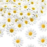 100 Stücke Kunstblumen Blumenköpfe, Seiden Kunstblumen Köpfe 4,5cm, Kunstblumen Gerbera Blütenköpfe, künstliche Blumen Deko für Hausgarten Hochzeit Partei DIY Basteln Scrapbooking (Weiß)