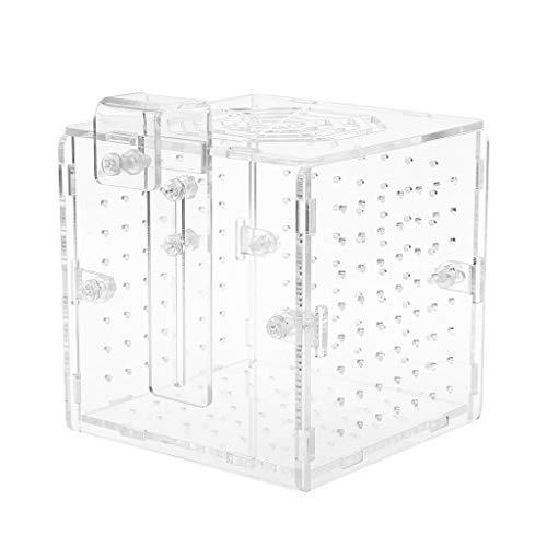 ECMQS Acryl Aquarium Zucht Isolation Box Mit Saugnapf Für Baby Fisch Brut Inkubator Käfig
