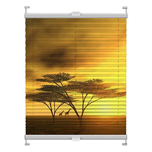 Plissee mit Motiv 5002 nach Maß Schrauben in Glasleisten Klemmen auf Fensterrahmen Digitaldruck Sichtschutz lichtdurchlässig fest verspanntes Jalousie Rollo Fenster innen Breite 25-50 Höhe 101-124 cm