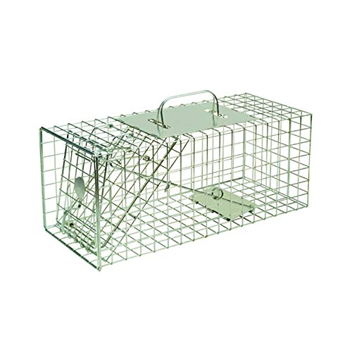 Defenders Animal Trap Cage - (Trampa humana fácil de colocar para ardillas y fauna silvestre de tamaño similar, adecuada para uso en interiores y exteriores) - Tamaño pequeño