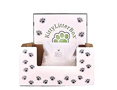 Cat Kitten Litter Box Tray with 3 Kg Organic Biodegradable Silica Sand Litter Bag, One Month Supply, 19 x 15 x 10 cm