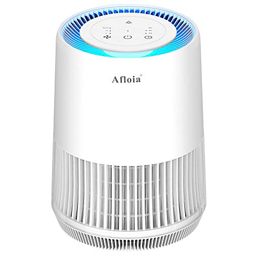 Affordable Air Purifier for Home Smokers Allergies and Pets Hair, True HEPA Filter Air Purifier for ...