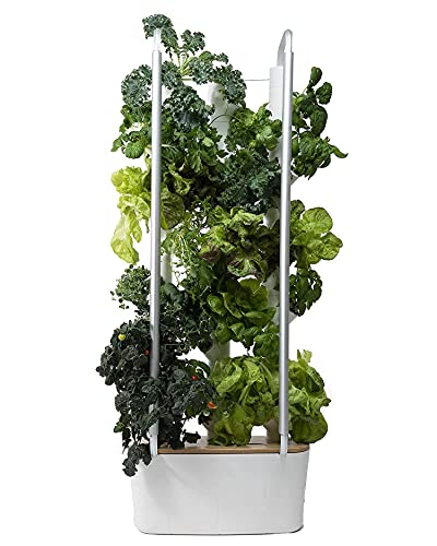 Gardyn Home 30-Plant Indoor Smart Garden - WiFi Integrated Vertical Gardening Kit with AI-Based App - Best Invention by Time Magazine - Automatic Hydroponic Growing System