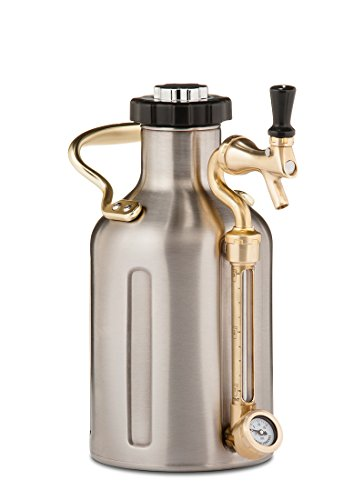 GrowlerWerks uKeg Carbonated Growler, 64 oz, Stainless Steel