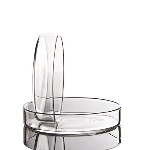 placa petri vidrio fabricante juler