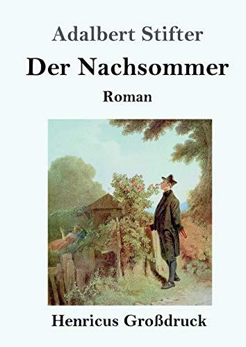Der Nachsommer (Großdruck): Roman