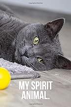 My Spirit Animal: Contemplative Russian Blue Cat Journal
